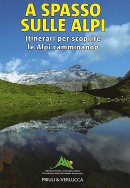 A spasso sulle Alpi