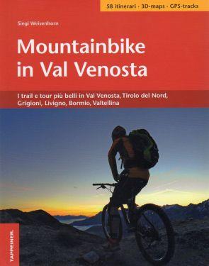 Mountain bike in Val Venosta