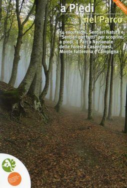 A piedi nel Parco Nazionale Foreste Casentinesi 1